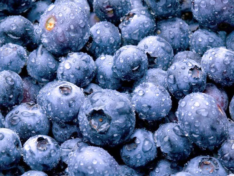 Blueberries – recipe ingredient