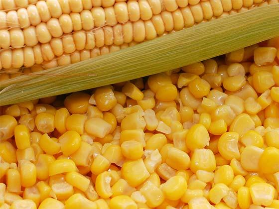 Canned corn – recipe ingredient