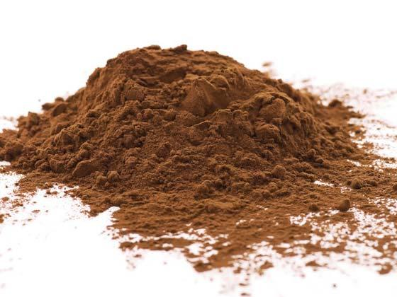 Cocoa powder – recipe ingredient
