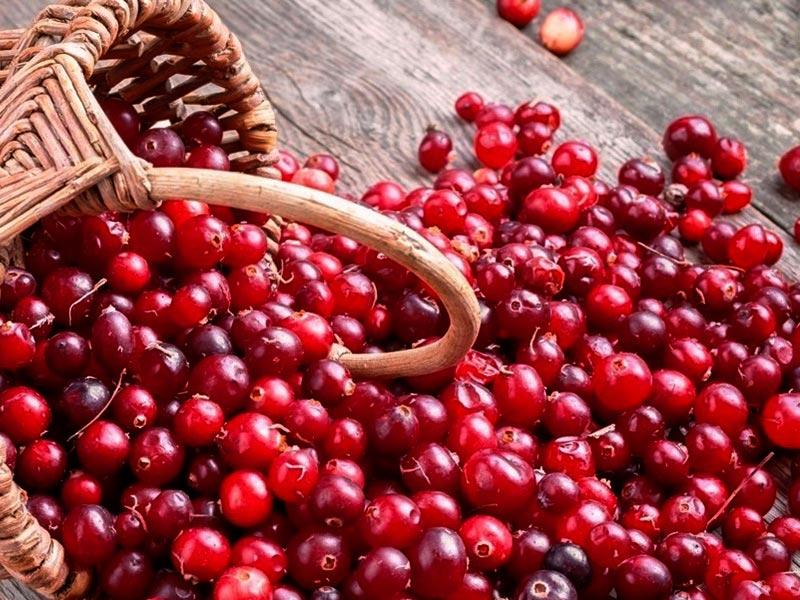 Cranberries – recipe ingredient