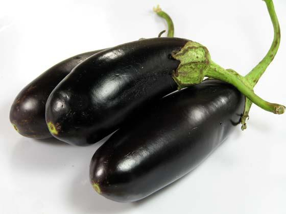 Eggplants – recipe ingredient