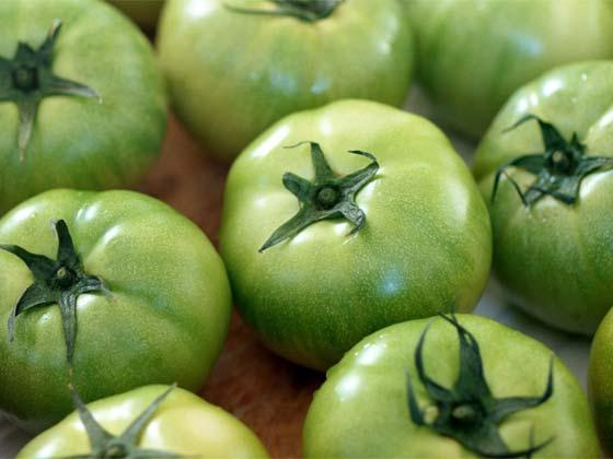 Green tomatoes – recipe ingredient