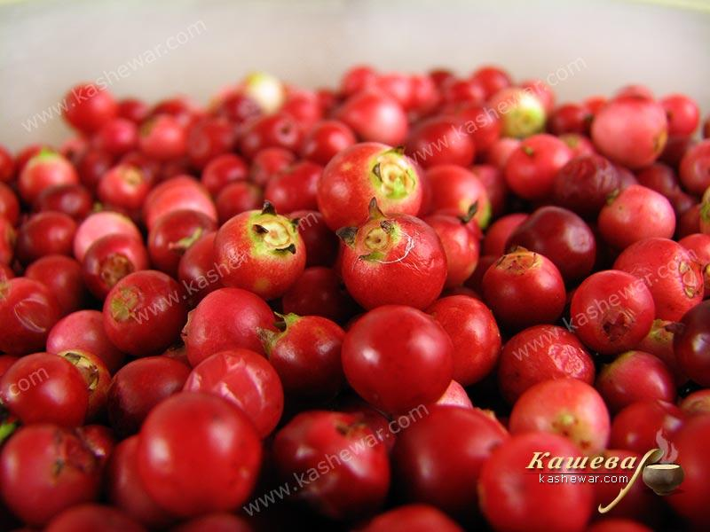 Lingonberry – recipe ingredient