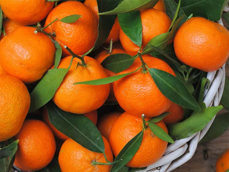 Tangerine – recipe ingredient